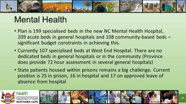 Department of Health Northern Cape Key Challenges in ...