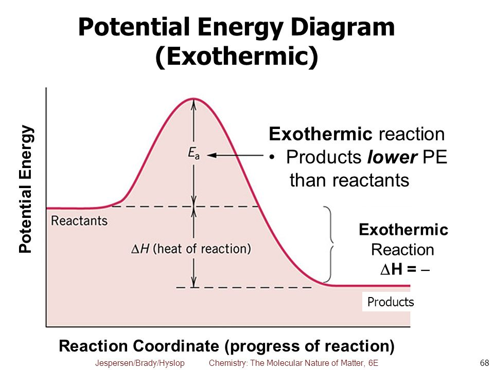 Endothermic And Exothermic Reaction Coordinate Diagram