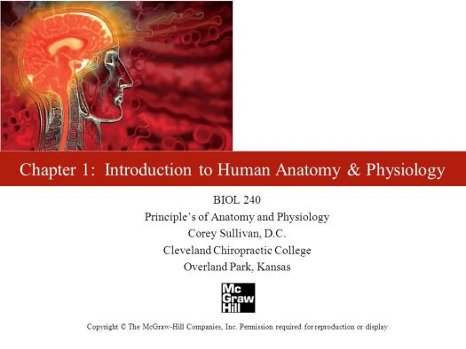 Chapter 1 Introduction To Human Anatomy And Physiology Mastery Test ...