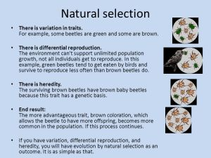 Biological Evolution Four friends were discussing the