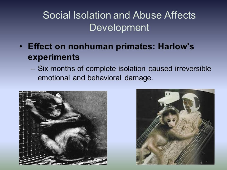 Effects Social Isolation