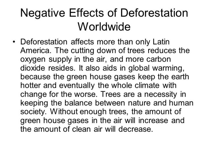 Afforestation essay in english