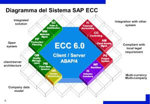 SAP ECC 60 Procurement Process  ppt video online download