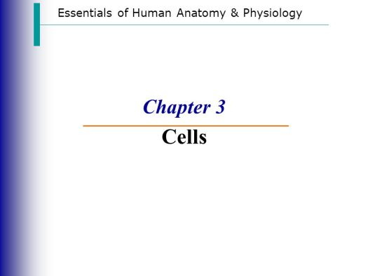 Essentials Of Human Anatomy And Physiology 9th Edition Chapter 3