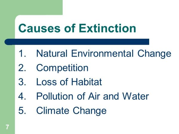 Loss of Biodiversity Section 1.1 & 1.2 PP ppt video online ...