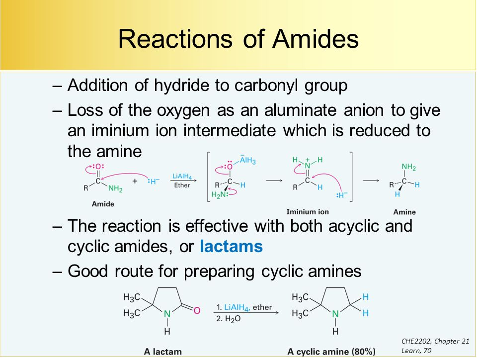 And Difference Acyclic Cyclic Between Amide Amide