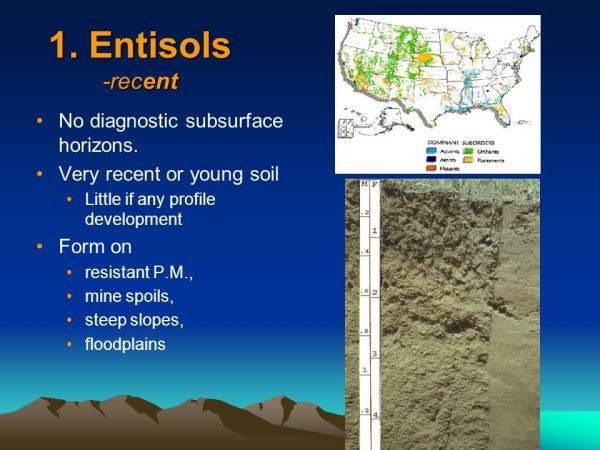 Soil Classification in the United States - ppt video ...