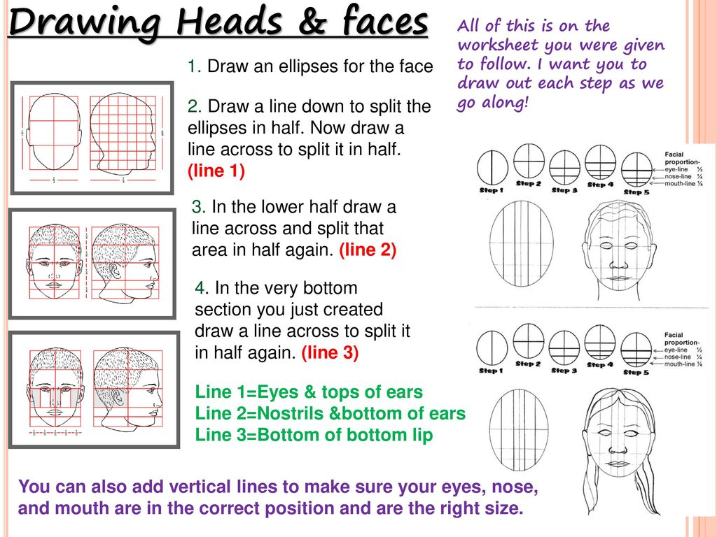 People Amp Faces How To Draw A Human Face