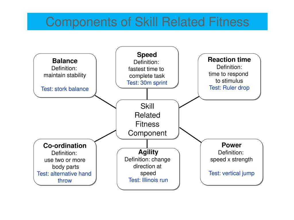 Components Of Health Related Exercise Physical Fitness