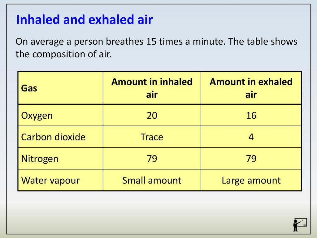 What Is The Chemical Makeup Of Inhaled Air