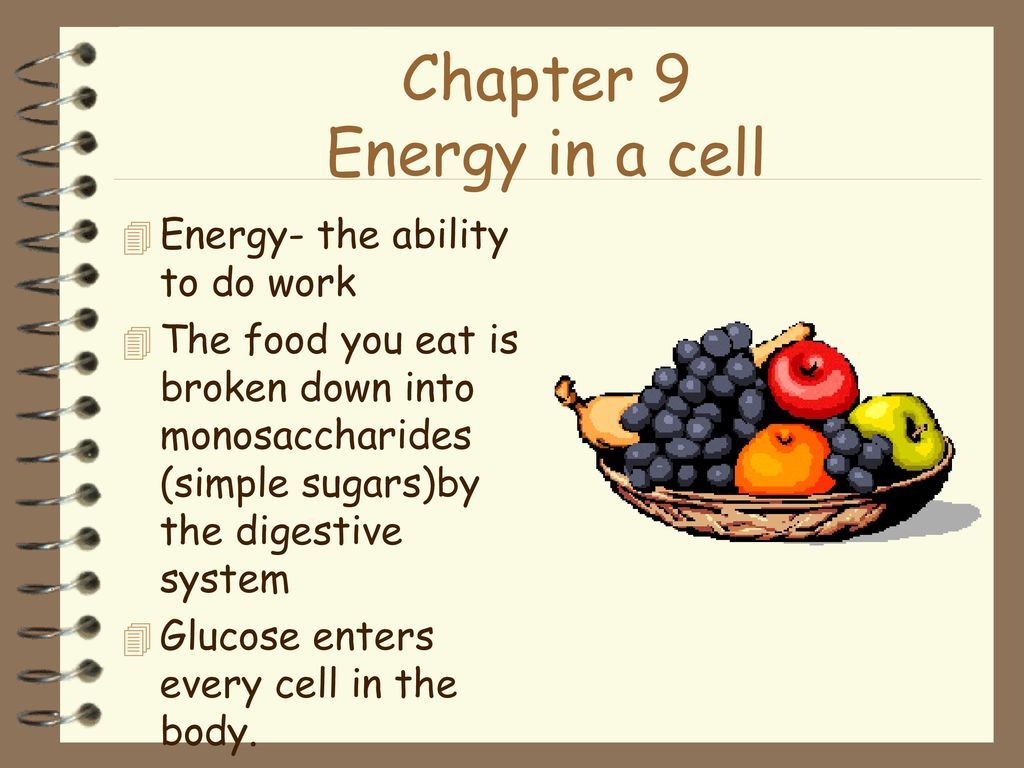 Chapter 9 Energy In A Cell