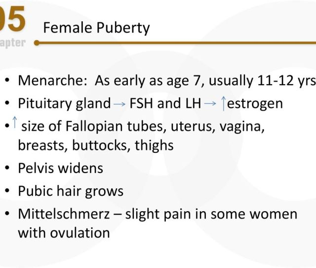 Female Puberty Menarche As Early As Age 7 Usually Yrs