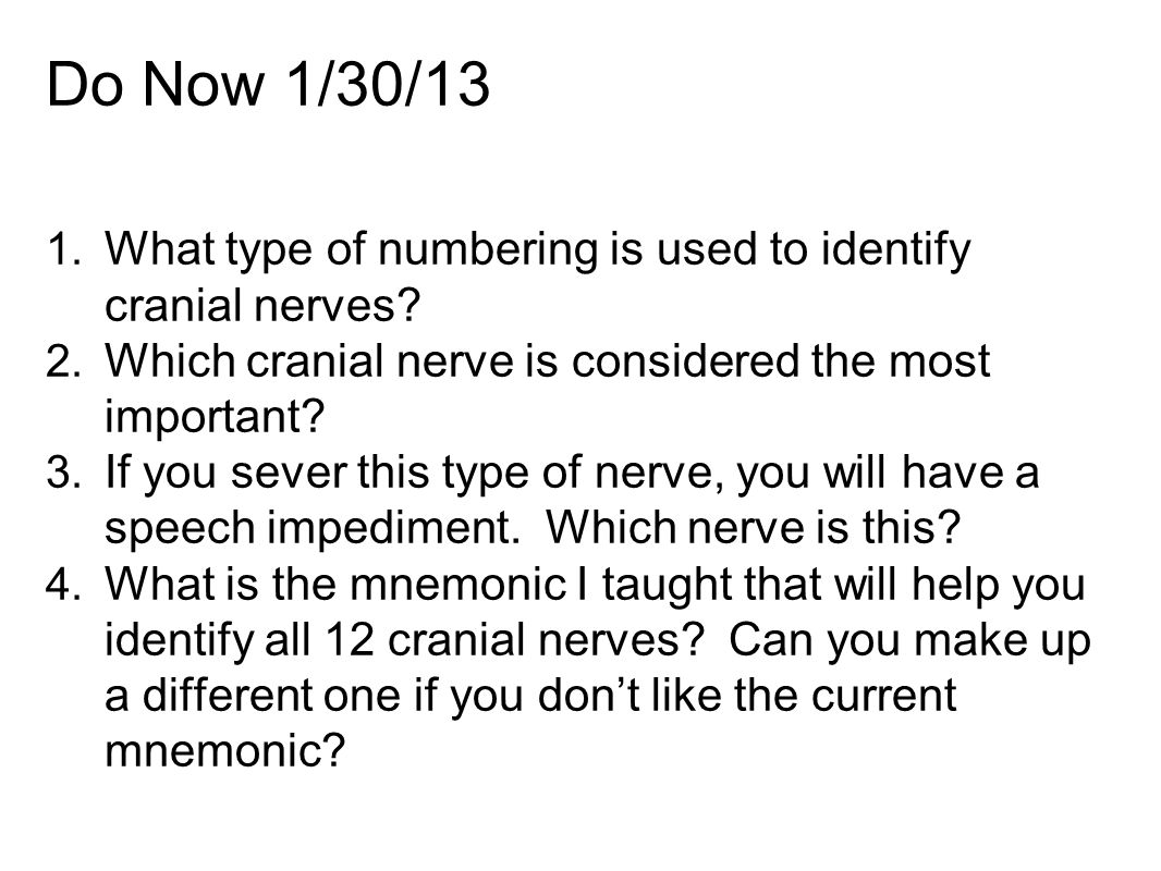 Notes 9 14 9 15 Peripheral Nervous System