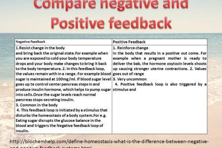 Positive Feedback Mechanism Anatomy Definition Home Paint Colour