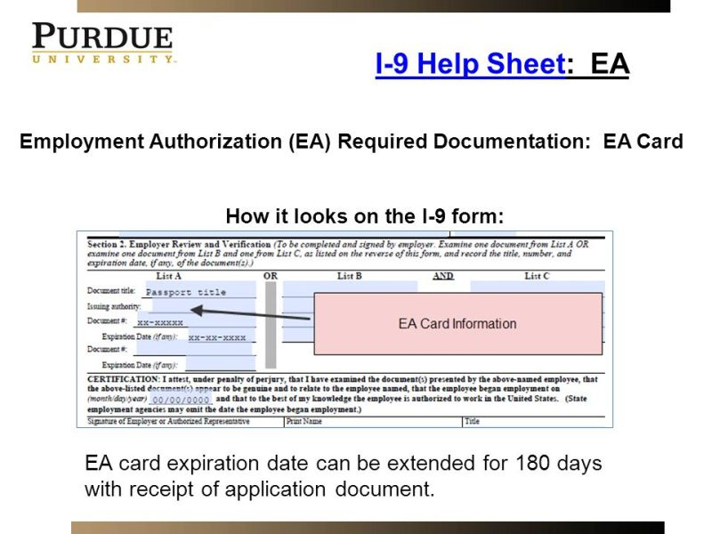 Employment Authorization Card Expired Can I Work | Infoupdate.org