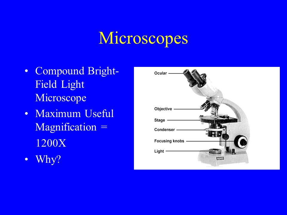 Wonderful Microscopes Compound Bright Field Light Microscope Ppt