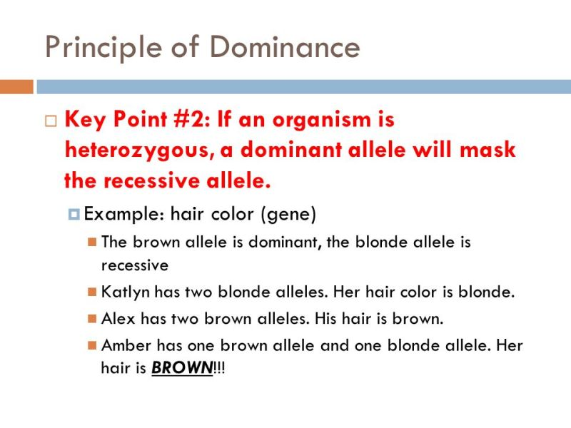Which Hair Color Is Dominant Coloringsite
