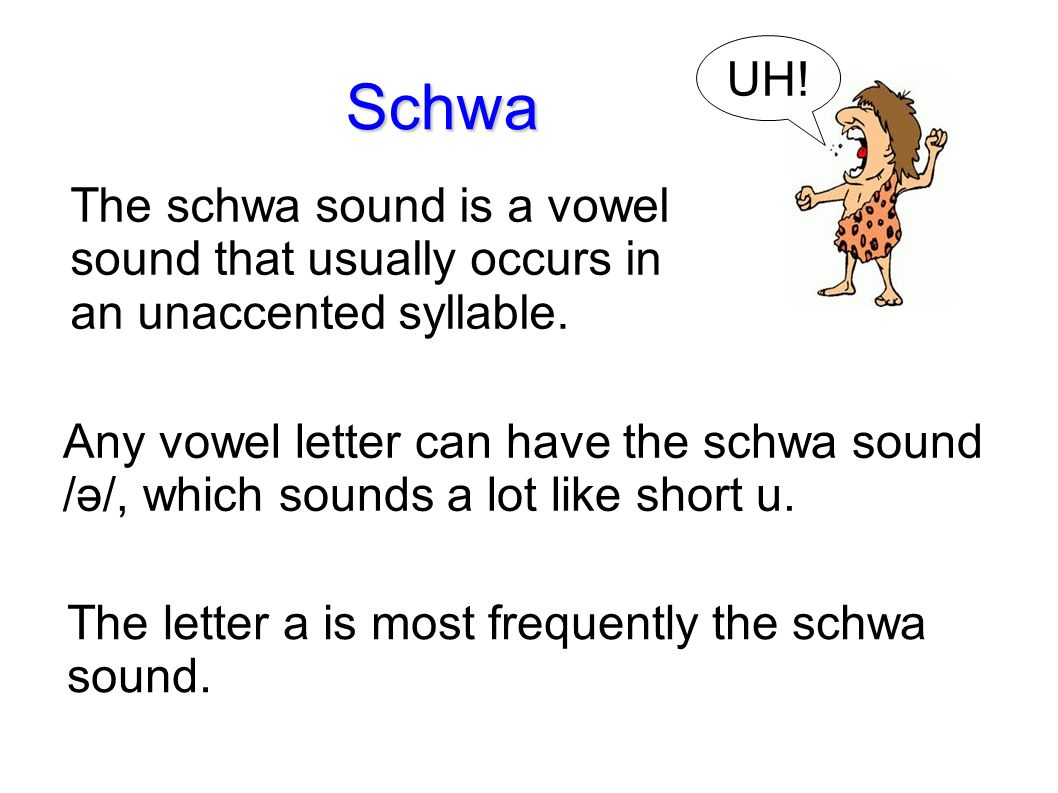 Lesson 37 Level 3 Language Arts Schwa Sentence Writing With Ms Sheri