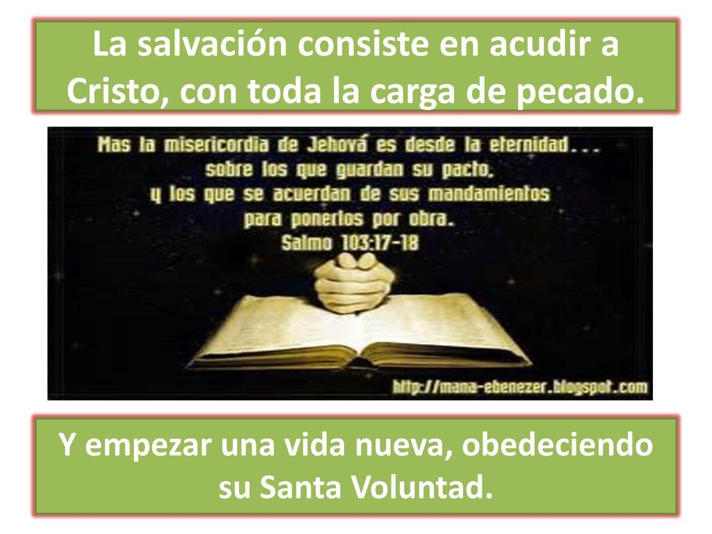 Salmos De Gratitud Dios