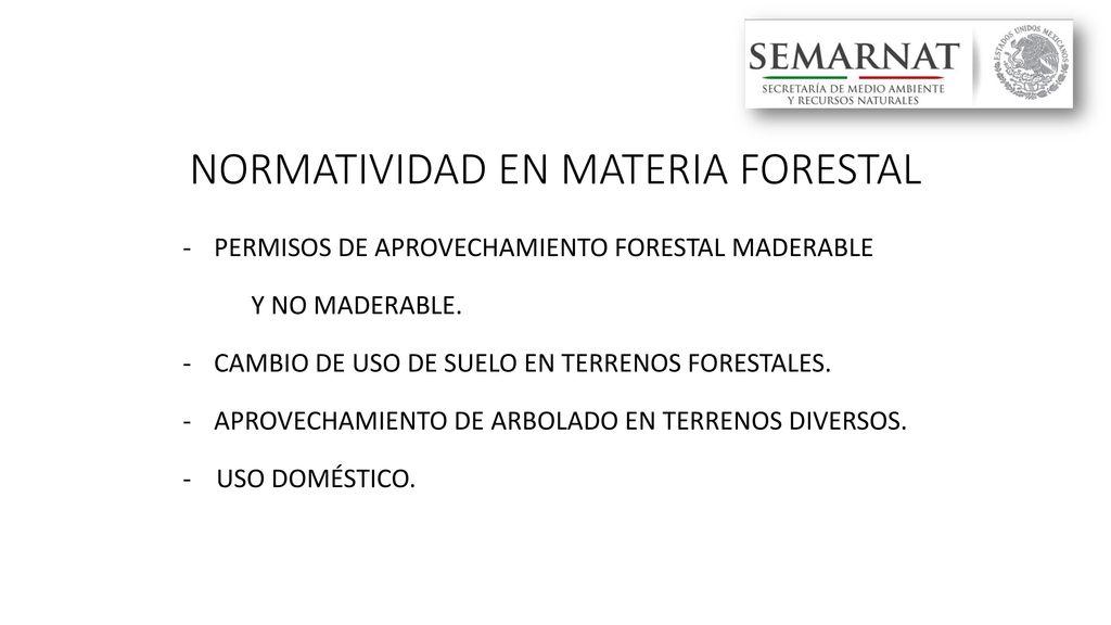 Resultado de imagen para MATERIA FORESTAL
