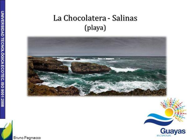 Ecosistemas en Bioregion Guayas. - ppt descargar