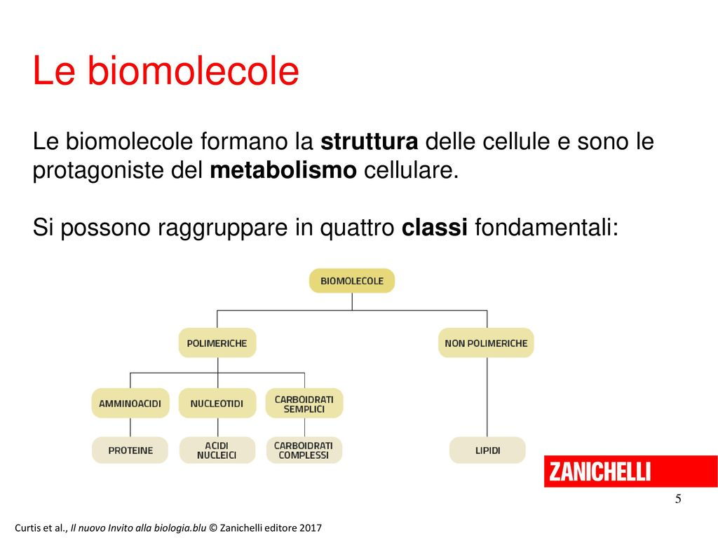 1311 Ppt Video Online Scaricare