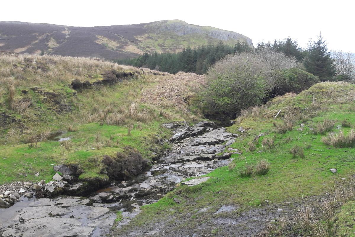 Glencar Bog Road
