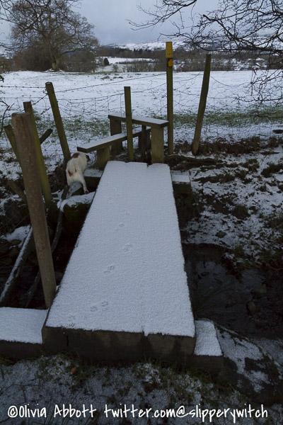 snowy day-4