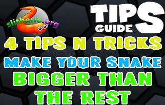 4 Tips and Tricks to Make Your Snake Bigger Than the Rest