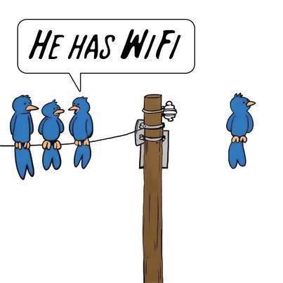 funny-wifi