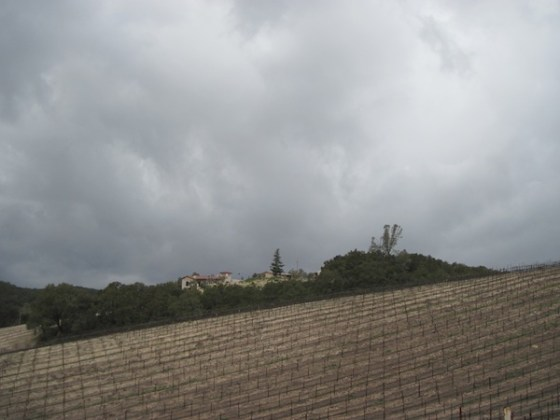 Clouds of Approaching March Storm over Croad Vineyard and Tasting Room