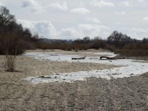 The Salinas River Flows Toward Me on January 21