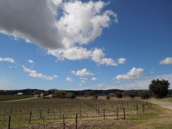 Clouds Over Castoro Cellars March 5