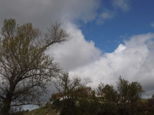 Sky From My Yard April 5