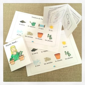 Mini plant books and custom word mats.