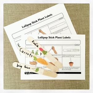 Popsicle stick plant labels for our kids vegetable garden.