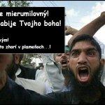 "GATESTON INSTITUTE: Islamské ""ľudské práva"""