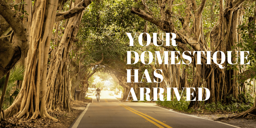 your domestique has arrived and ready to answer your cycling questions