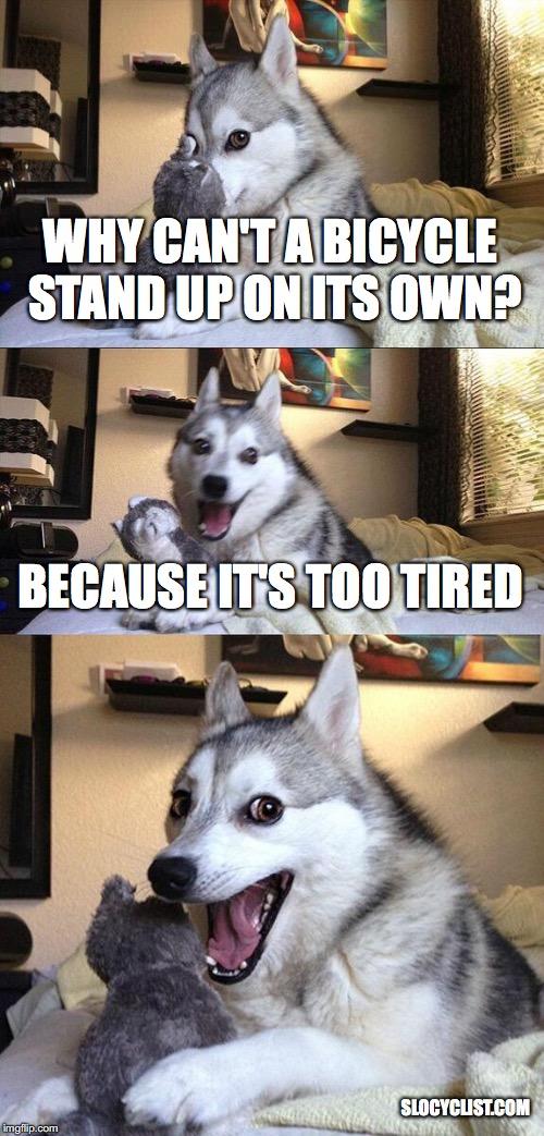 Funny Bicycle Meme funny meme about bicycles pad pun dog cycling joke