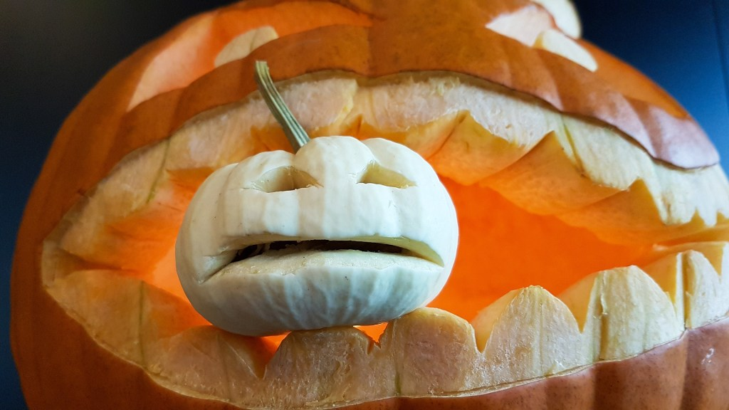 pumpkin eating pumpkin carved cycling