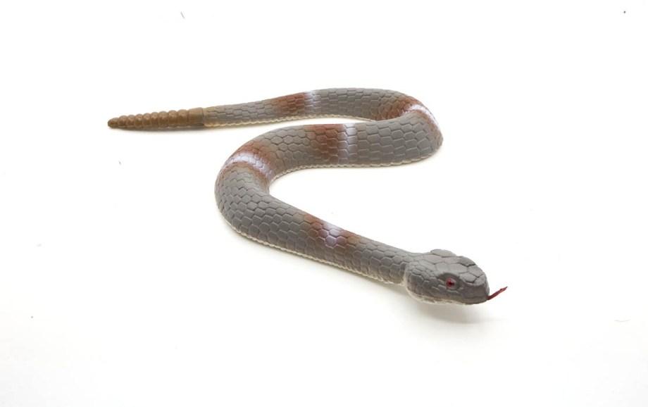 Gumena zmija 46cm, realistična, višebojna zmija, napravljena od gume dužine 46 centimetara.