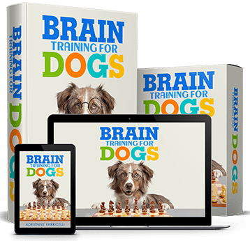 Adrienne Farricelli Brain Training For Dogs Reviews