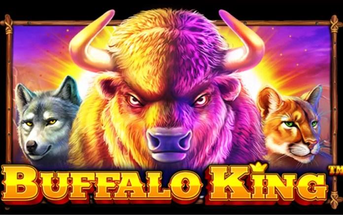 Buffalo King Pragmatic