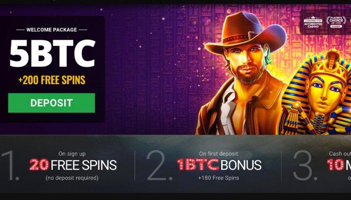 5 dragons bitcoin slot wins