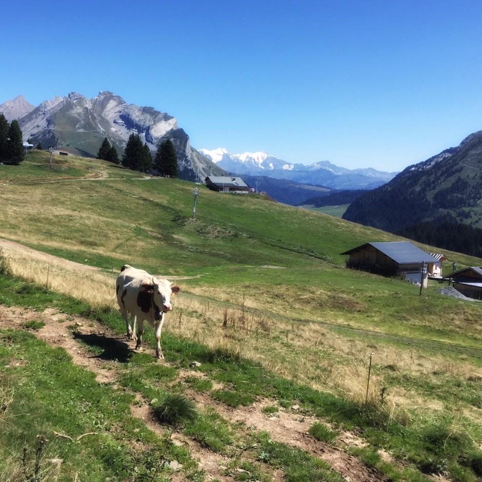 Plateau de Beauregard Alpine scene