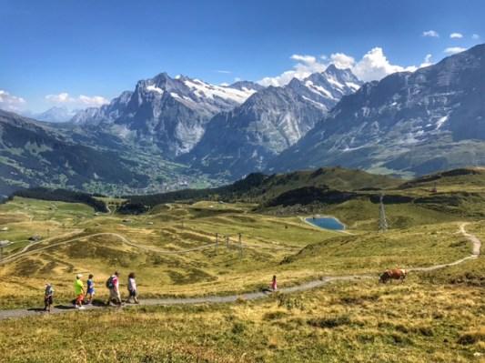 Summer holiday 2017 Mannlichen view