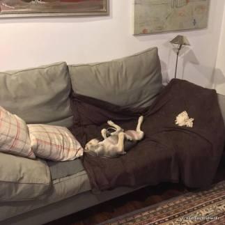 Einas Sofa