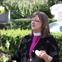 Bishop Kucharek, planting a tree in Torrington, CT