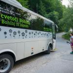 Free Transport Bohinj