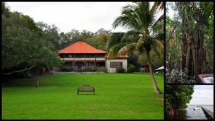 Near Coconut grove